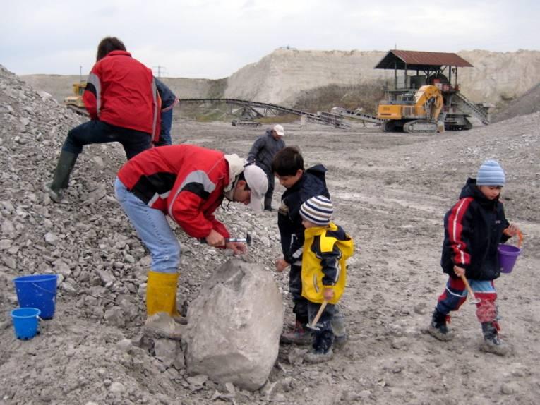 Erwachsene und Kinder arbeiten sich mit dem Hammer durch Kalkgestein. Sie tragen dabei Gummistiefel und Regenjacken. Fundstücke werden in Plastikeimern verstaut.